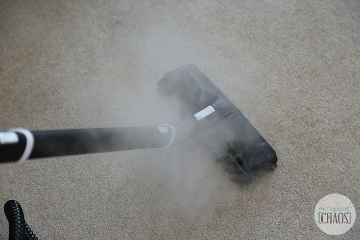 dupray steam cleaning carpet home