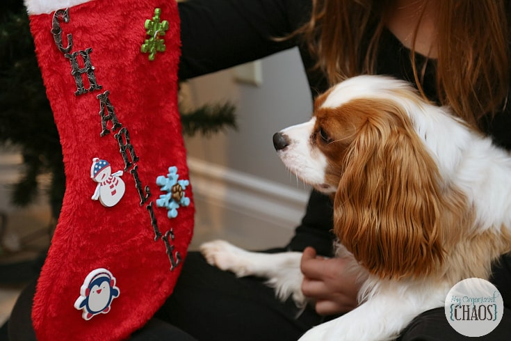 milkbone treats stocking stuffers for dogs
