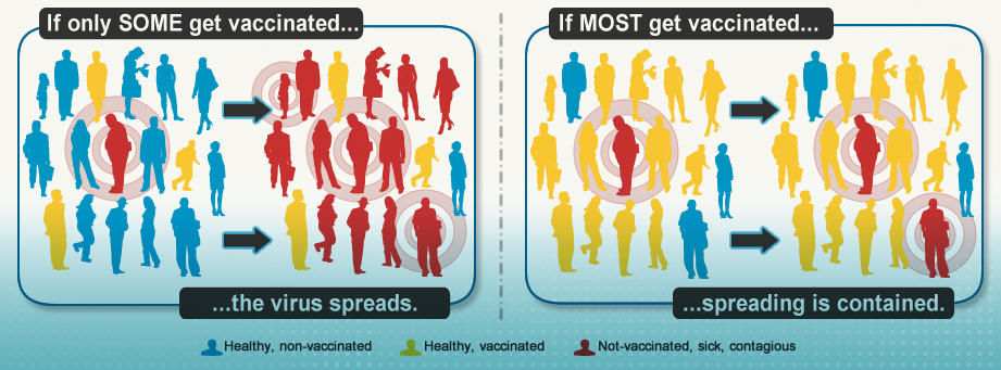 flu vaccines protect