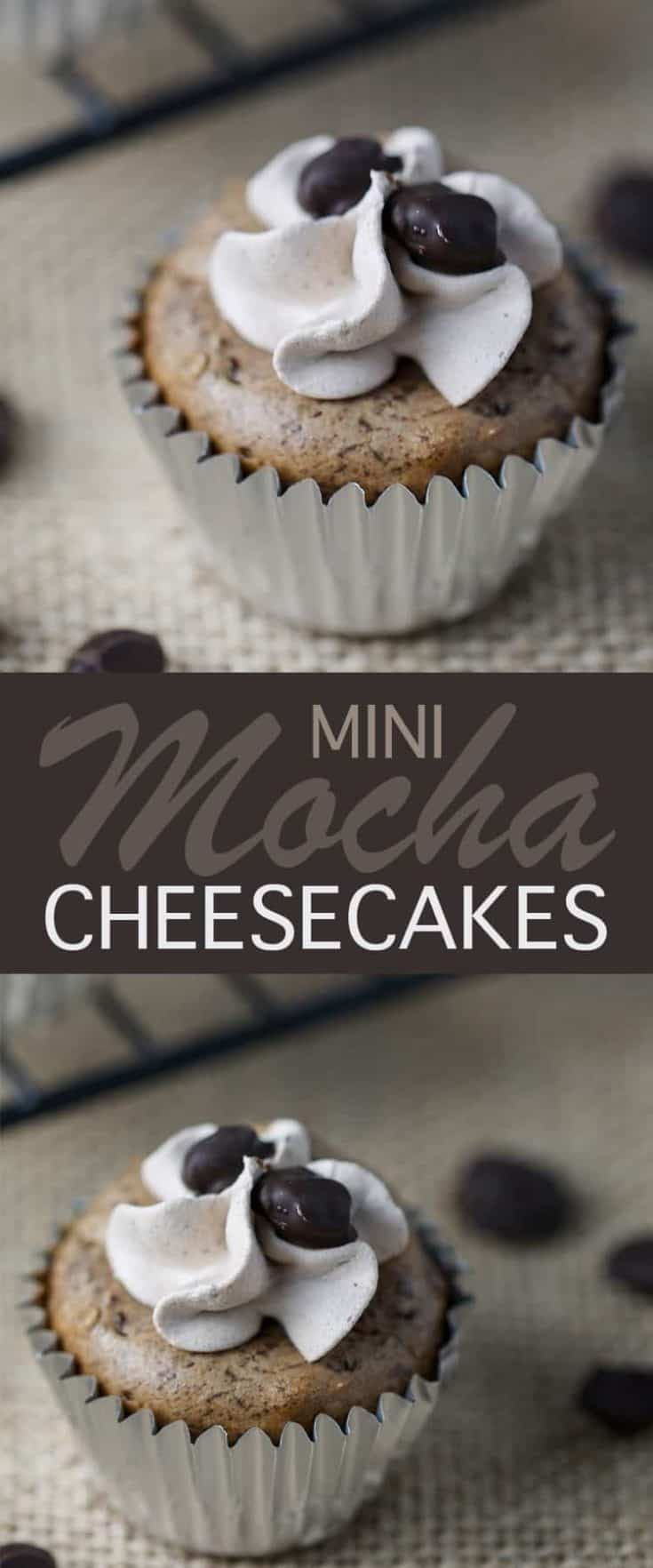 Easy to make and delicious Mini Mocha Cheesecakes recipe with chocolate coffee beans and a cool chip cocoa topping, the perfect mocha cupcake! #cheesecake #mocha #desserrecipe