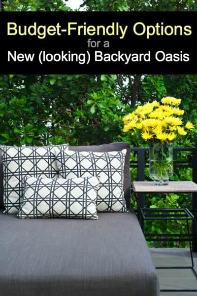 Budget-Friendly Options for a New (looking) Backyard Oasis