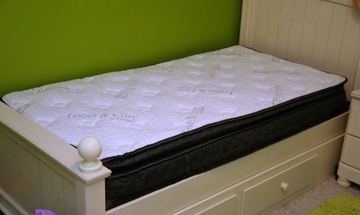 Logan Amp Cove Luxury Pillow Top Mattress In A Box