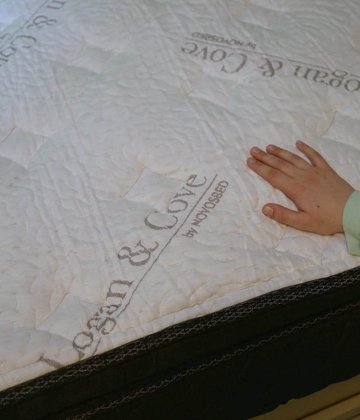 Logan & Cove: Luxury Pillow Top Mattress – In a Box!