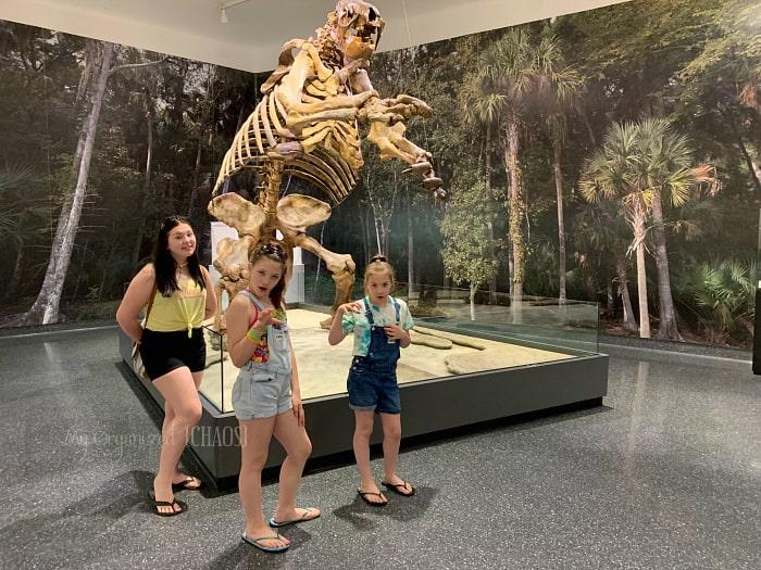 moas museum florida