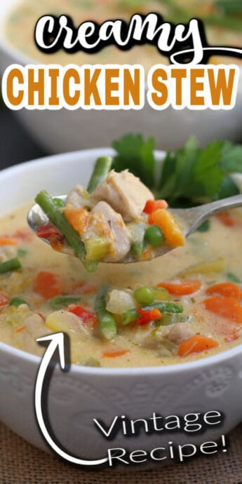 chicken stew with text